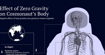 Negative Effects of Space Exploration on the Human Body