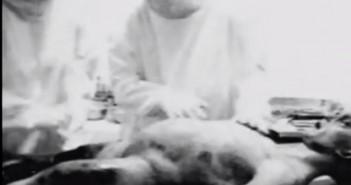 Famous Alien Autopsy Hoaxes
